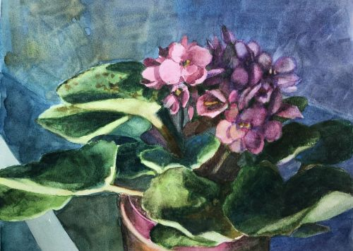 Watercolor Painting Sketchbook - Study of African Violets