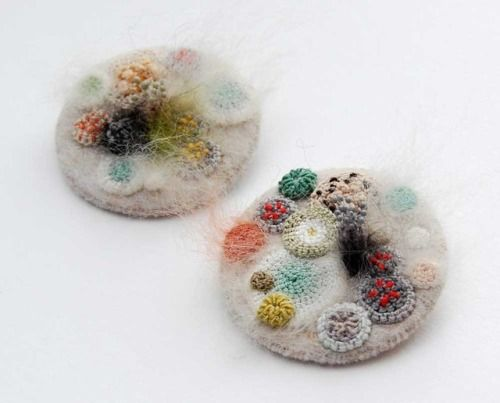 Elin Thomas creates petri dishes filled with mold, but she's