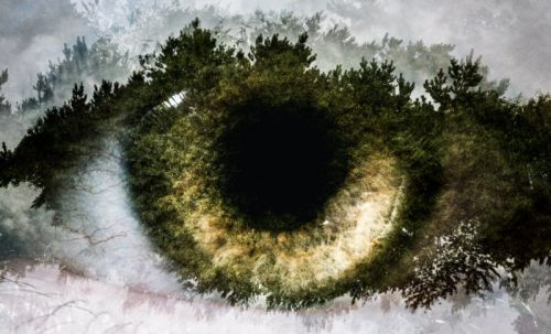 These Multiple Exposure Eye Photos Were Made Entirely In-Camera