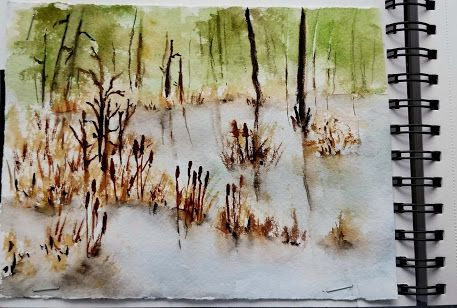 Travel Journal - The Swamp - at Goose Creek State Park, NC
