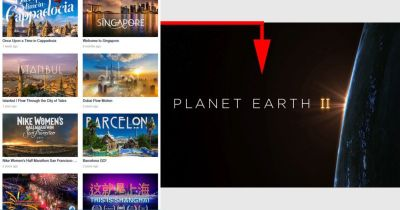The Power of the Internet: My Journey from Vimeo to Planet Earth II