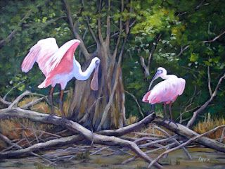 Everglades Spoonbills Bird Art Print Florida Birds Free Shipping