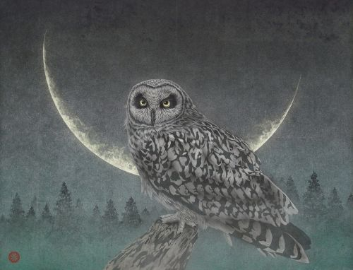 Moonlit Owls, Tigers, and Dragons Set Against Ethereal Backgrounds in Paintings by Takashi Kanazawa