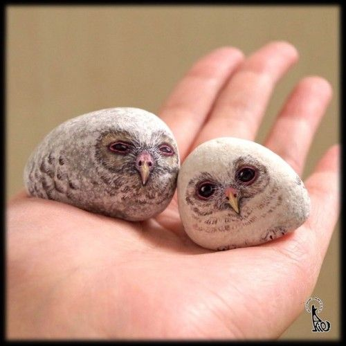 Japanese Stone Artist Paints Realistic Looking Animals Onto