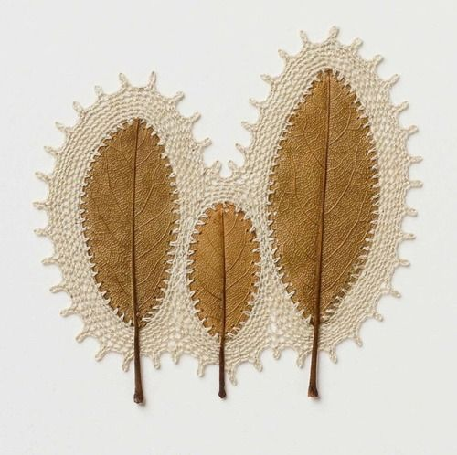 Crossconnectmag: Crocheted Leaf Sculptures by Susanna Bauer To