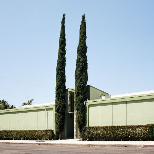 Unusual Trees and Topiaries Sprout Alongside Buildings in a Photo Series by Sinziana Velicescu