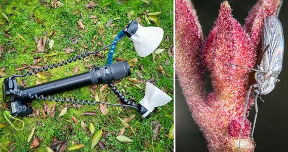Photographer 3D-Printed a 300mm Extension Tube for 5X Macro Photos