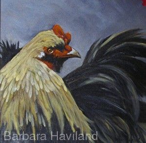Fighting Rooster,barnyard fowl,oils,canvas, Barbara Haviland