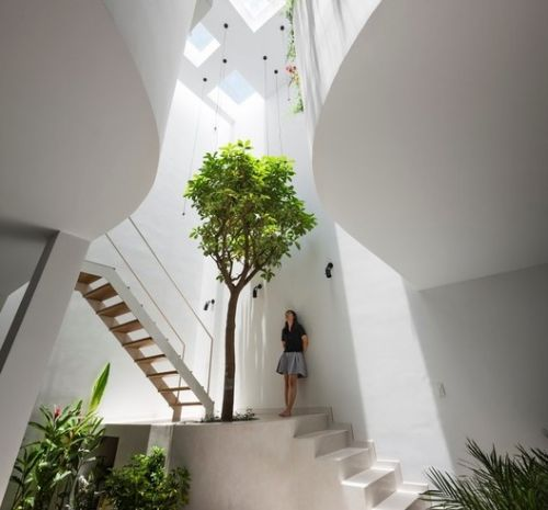 How to Transform a Polluted Indoor Environment into a Healthy Home