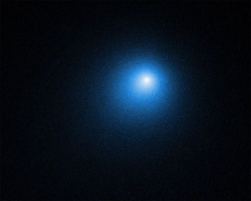 Comet of the Year