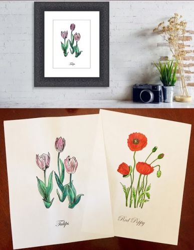 Botanical Flowers Drawings and Paintings - Coloring Book Journey