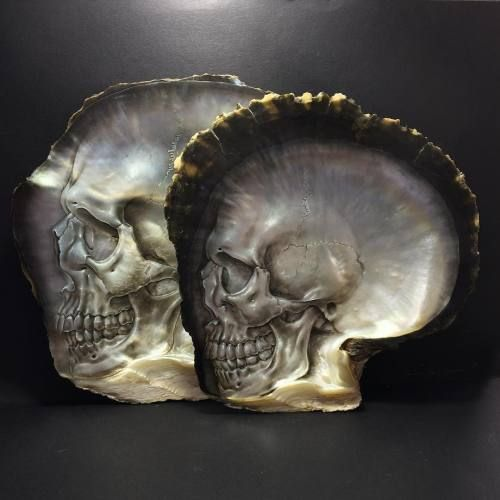 Crossconnectmag: Detailed Works on Seashells by Gregory
