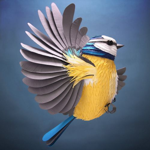 Dazzling Three-Dimensional Paper Sculptures of Birds, Bees, and Crustaceans by Lisa Lloyd