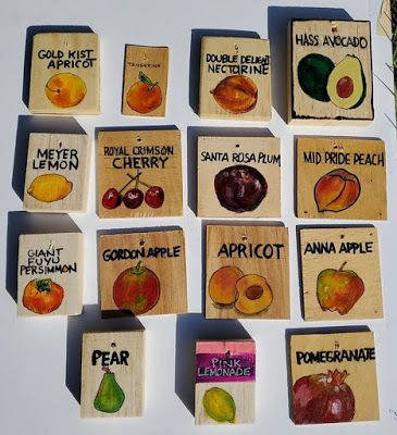 Fruit Tree Signs