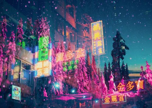 Multiple Exposures of Neon Lights and Nature Sights