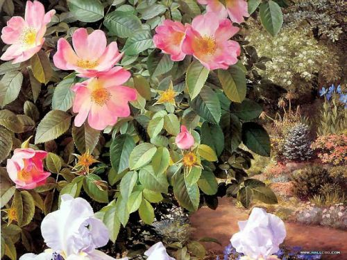 The Floral Art of Raymond Booth