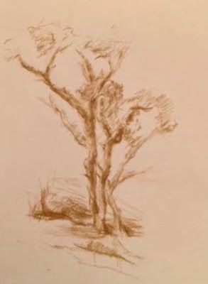 Drawing of Small Trees - sienna landscape drawing