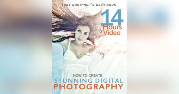 This Best-Selling Digital Photography Book is Free Right Now