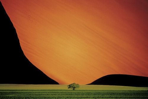 Dead at 83, Photographer Pete Turner