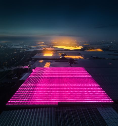 The Ever-Present Glow of LED Greenhouses Documented by Aerial Photographer Tom Hegen