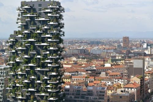 Vertical Greenery: Impacts on the Urban Landscape