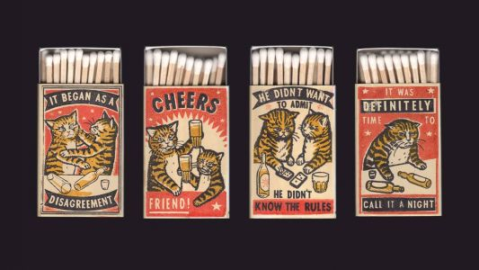 Hilarious Matchboxes Depict Cats Making Questionable Decisions