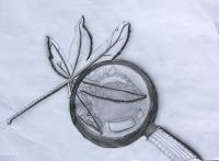 Drawing magnified leaves: Finding the details
