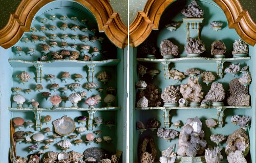 Cabinet of Curiosities: A New Book Opens Centuries-Old Collections of Fossils, Sculptures, and Other Oddities