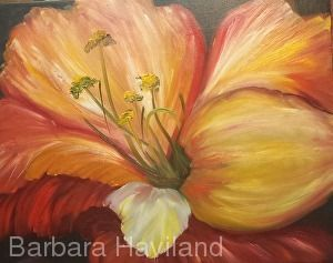 Fantasy Hibiscus II,oils canvas,framed,Barbara Haviland-Texas Floral Artist