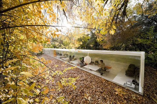 10 Incredible Works of Architecture Photographed in Fall: The Best Photos of the Week