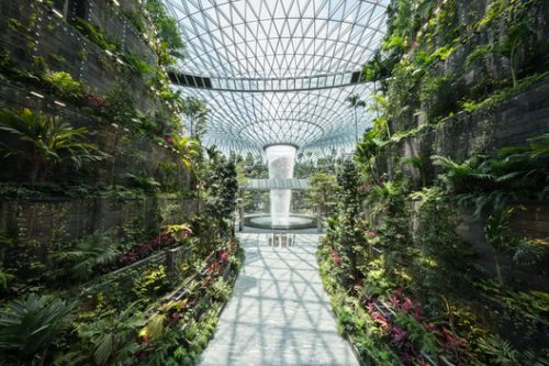 Safdie Completes World's Tallest Indoor Waterfall in Singapore