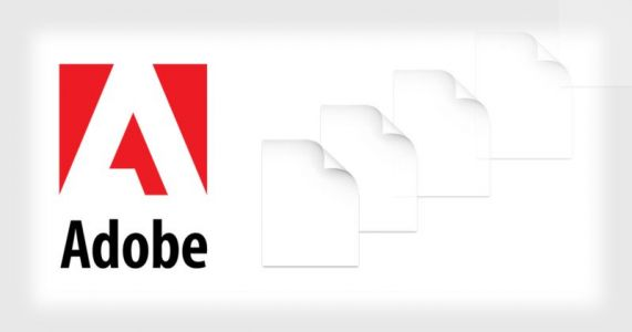 Photographer Sues Adobe Saying Bug Deleted Files Worth $250,000