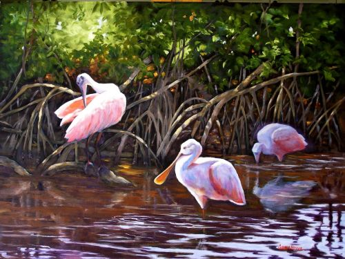 Roseate Spoonbills, Giclee Prints on Canvas