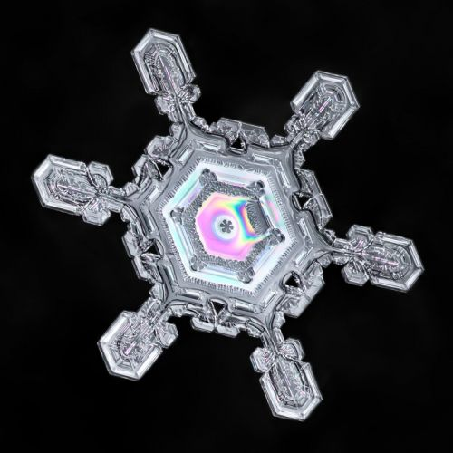 How I Capture Vibrant Colors Inside Snowflakes