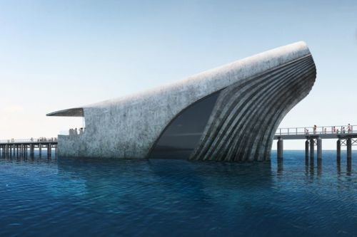 World's Largest Natural Marine Observatory Takes the Shape of a Whale