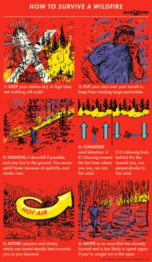 FYI: How to Survive a Wildfire