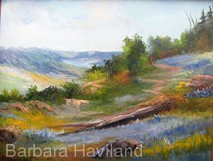 Barbara Haviland-Texas Landscape Artist, Wildflowers,oils canvas