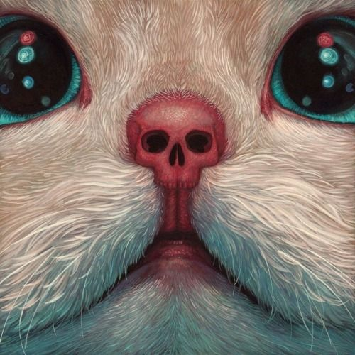 Crossconnectmag: Casey Weldon lives and works in Seattle. He is