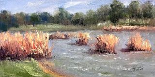 Lake Side Gold, New Contemporary Landscape Painting by Sheri Jones