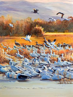 "Original Bird Wildlife Landscape Painting ""Sunrise Burst at Bosque"" by Colorado Artist Nancee Jean Busse"