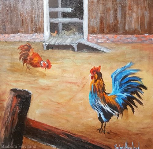Walking the Walk, Rooster, oils canvas, Barbara Haviland