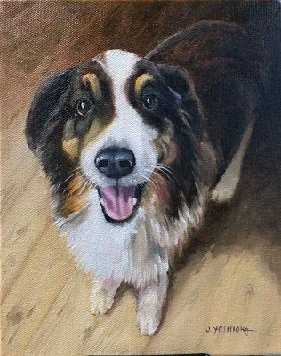 Pet portraits available!
