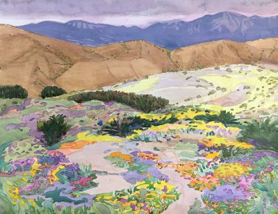 Superbloom 2019: Series from the California desert and Walker Canyon