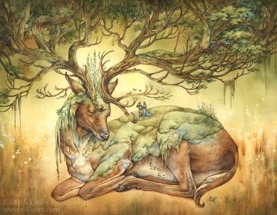 Arboreal Dreams: The Forest