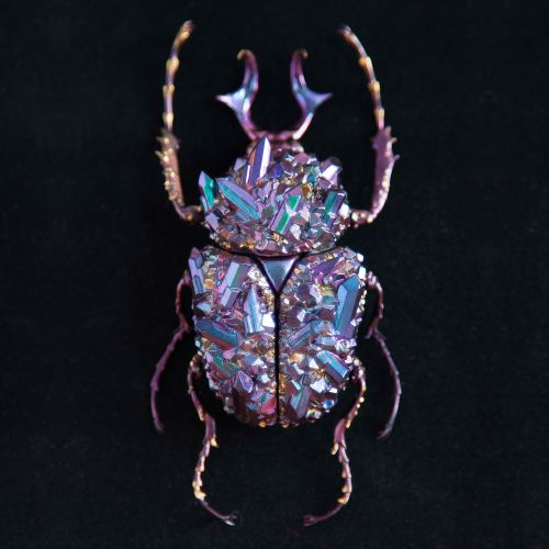 Beetle Sculptures Encrusted with Minerals by Nozomi