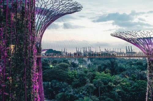 New Algorithm Finds The Greenest City in The World