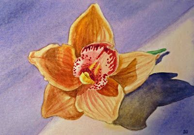 Orchid Flowers Watercolor Paintings