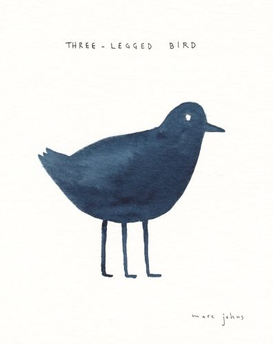 Three-legged bird