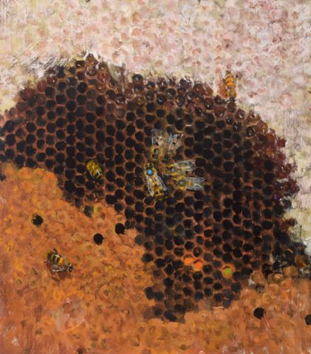 Marked Queen with Honey, Brood and Pollen