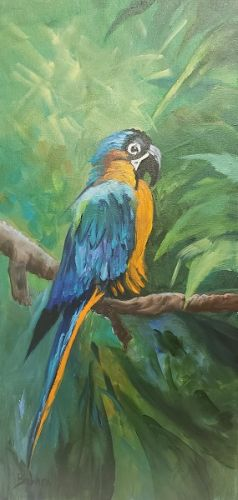 My Blue Parrot, bird, Barbara Haviland
